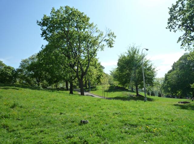 st-marys-park